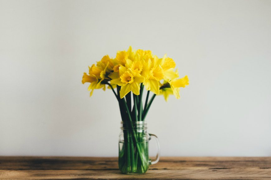 daffodils in a clear mason jar on a wooden table
